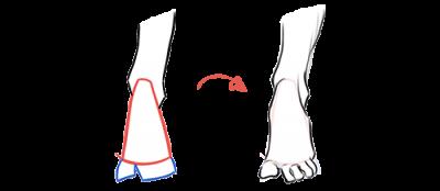 pieds_exercice_volume